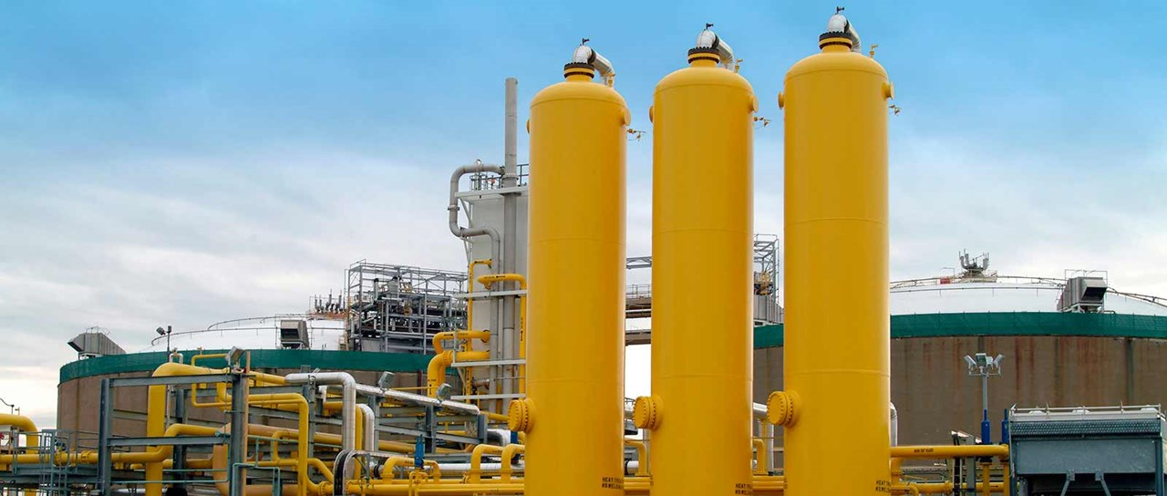 Seals for the onshore oil, gas and petrochem industry